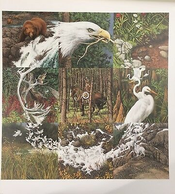 "BEV DOOLITTLE ""SACRED CIRCLE"" signed and numbered limited edition 23386 / 40192"
