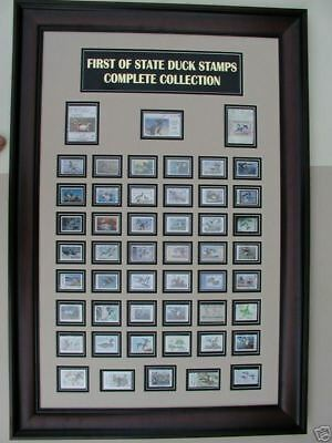 FIRST OF STATE DUCK STAMP FRAME- NEW 2015  MODEL- du collection,goose,gift