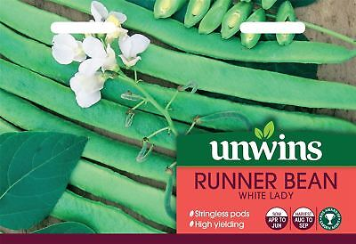 Unwins Pictorial Packet - Runner Bean White Lady - 40 Seeds