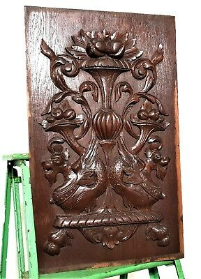 Gothic griffin scroll leaves panel Antique french wooden architectural salvage