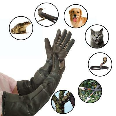 Anti Bite Protective Gloves Catching Dog Reptile Snake Animal Long Leather Glove