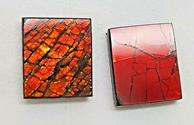 "Ammolite ""Canada's Opal"" 2 pieces 14X10mm Brilliant Red/Orange Gems #30"