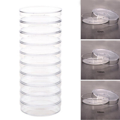 10x Sterile Polystyrene Petri Dish Culture Plate For Lab Bacterial Cell Yeast