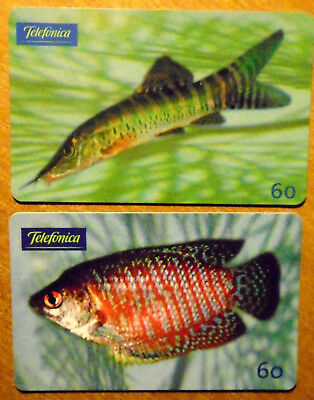 Bresil - Serie Poissons - Lot De 2 Cartes Differentes - 4