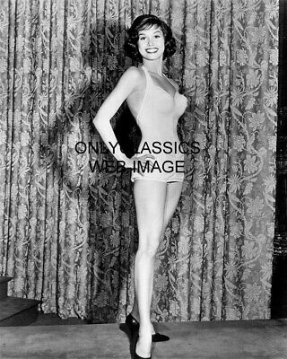 1960 Johnny Staccato Television Show Mary Tyler Moore Swimsuit 8X10 Photo Pinup