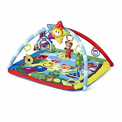 Baby Einstein Gym Activity Play Mat Musical Toy Educational Portable Unisex