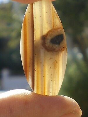 "1 Perfect "" Eye Bead"" Stone Agate Mesopotamian Design from Iraq 28 cts!!"