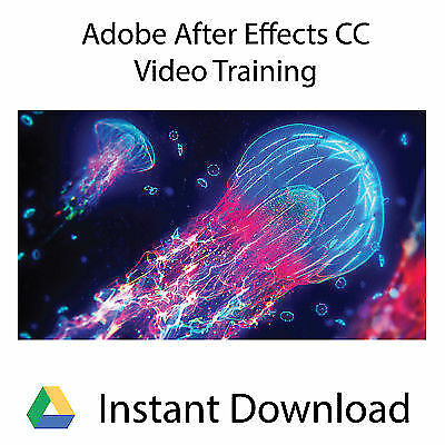 Adobe After Effects CC Professional Training Videos - Instant Download