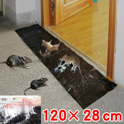 Big Strong Sticky Rat Mice Cockroach Mouse Rodent Glue Trap Catcher Board Mat AU