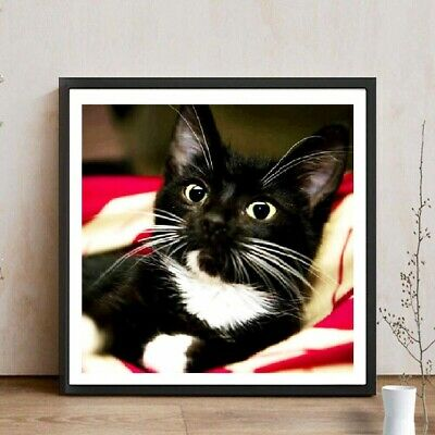 AU Black Cat Full Drill DIY 5D Diamond Painting Embroidery Cross Stitch Kit HE