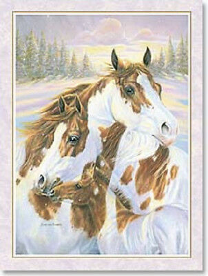 Xmas Cards PAINT HORSE FAMILY Holiday Christmas Cards 12 per pkg
