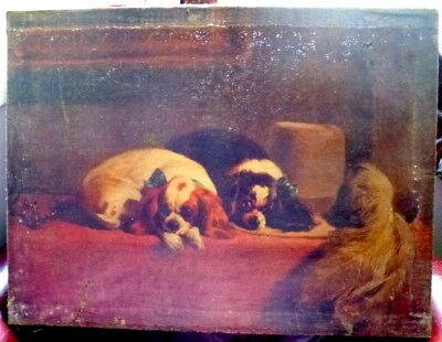 Charming 19th Century Oil Painting Dogs with Feather Hat King Charles Spaniels