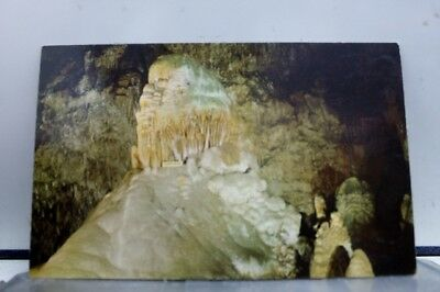 New Mexico NM Caveman Carlsbad Caverns Park Postcard Old Vintage Card View Post