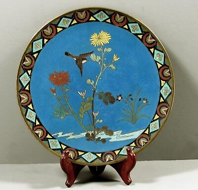 Japanese Cloisonne Plate     c1890 SONG BIRD  IN GARDEN
