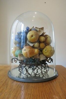 Victorian Fruit Display in Glass Dome
