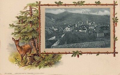 ZWINGENBERG, HESSE, GERMANY ~ NICE VIEW of the VILLAGE ~ c1900