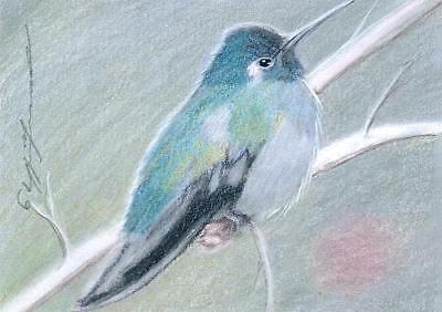 ACEO original pastel drawing hummingbird kolibri by Anna Hoff