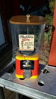 5 Cent Oak Acorn 450  Machine  Candy Gum Nuts Ajustable    Nice Looking Working