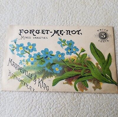 1800s Mandeville & King Flower Seed Packet, Forget-Me-Not, Unopened w Seeds NOS