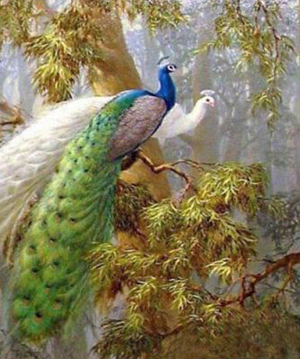 ZWPT528 100% hand-painted two exquisite bird peacocks art oil painting canvas