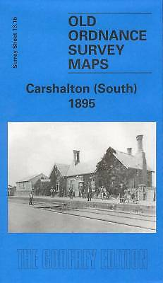 Old Ordnance Survey Map Carshalton (South) 1895