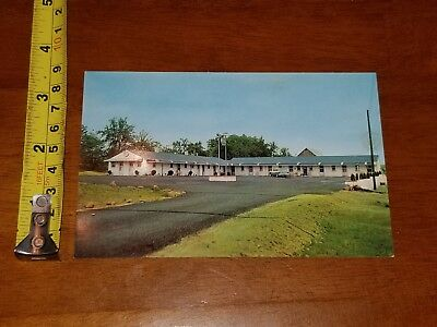 Rare Old Vintage Postcard Forest Motel