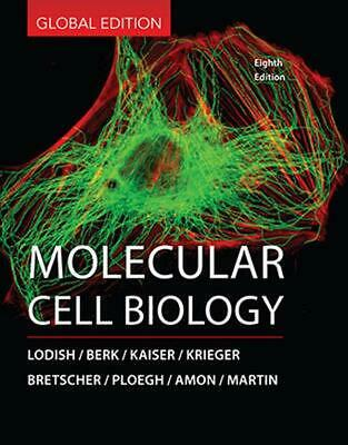 Molecular Cell Biology 8th Edition by Arnold Berk Hardcover Book Free Shipping!