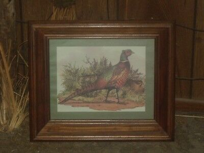 Vtg Homco Home Interiors Framed Ringneck Pheasant Bird Wall Art Print Picture 13