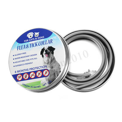Adjustable Pet Dog Puppy Cat Flea and Tick Collar 8 Months Protection Prevention