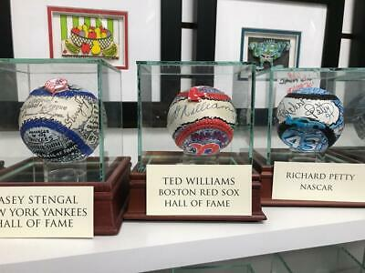 Charles Fazzino Ted Williams 3D Hand Painted Autograph Baseball Boston Red Sox