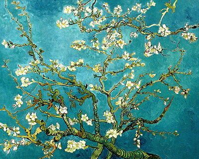 Canvas Print Almond Blossom Oil painting Art Giclee Printed on canvas P086
