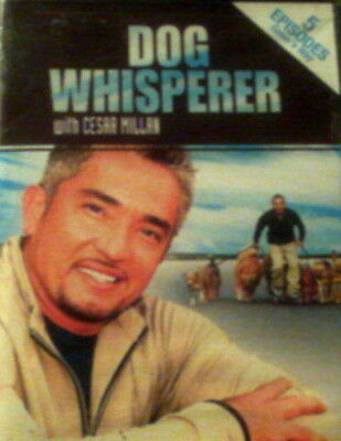 DOG WHISPERER with Cesar Millan 5 Episodes Boomer Josh Slick Pepper Emily Caper