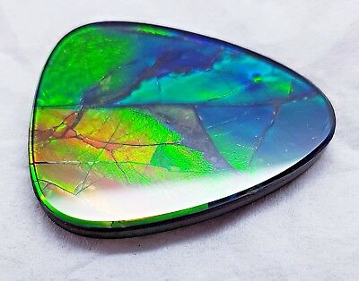 "Ammolite ""Canada's Opal"" Natural Free Form Green 28x35mm Stone #53"
