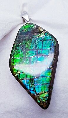 "Ammolite ""Canada's Opal"" Natural Free Form 38x20mm Green/Blue 925Bail #65"
