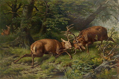 Art Print Animals Deer Fight Scene Oil painting Giclee Printed on canvas P764