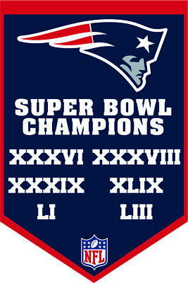 Super Bowl LIII (53) New England Patriots Champions Banner Magnet