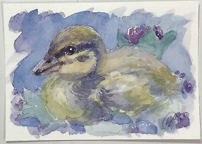 ACEO Duckling original duck painting Baby Ducks birds Art card listed by artist