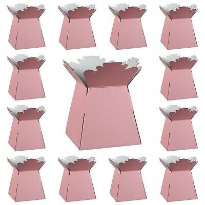 PALE PINK Living Vases Florist Bouquet Box Flower Plant Aqua Sweet Boxes UK