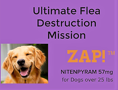 ZAP! Instant Fast Flea Killer 50 Capsules 57mg Large Dogs over 25lb Free Ship