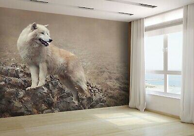 White Wolf at the Night Wallpaper Mural Photo 25313471 budget paper