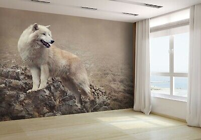 White Wolf at the Night Wallpaper Mural Photo 25313471 premium paper
