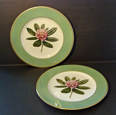 Vintage Greenbrier Hotel Rhododendren 2 Onodaga Pottery Co Ny Dinner Plates*wow!