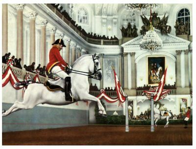 (P 819) Austria - Horse - Cheval - Spanish Riding School Vienna