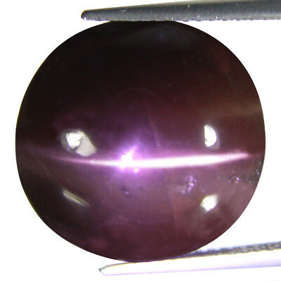 17.17 Ct Translucent Single Ray Round Natural Unheated Scapolite Cat's Eye Cab