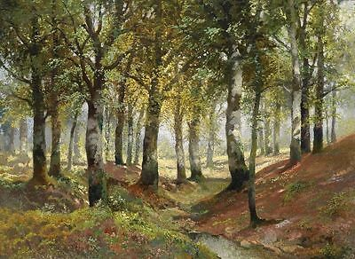 Forest Scenery Landscape Oil painting Art Giclee Printed on canvas P451