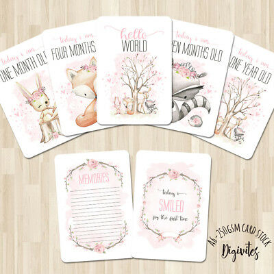 Baby Girl Milestone Cards, Baby Photo props, Woodland animals, 28 card set