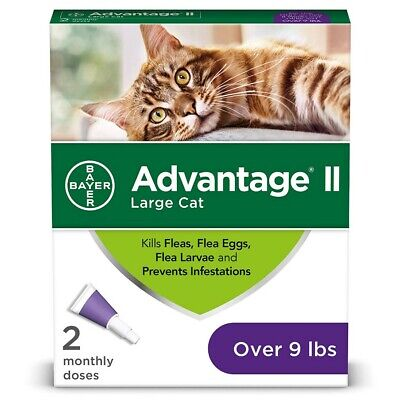 Bayer Advantage II Flea Treatment for Large Cats Over 9 lbs. 2 pack (2 Doses)