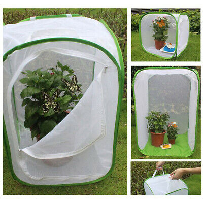 Butterfly Grasshopper Seedling Incubator Light Transmission Breeding Insect Cage