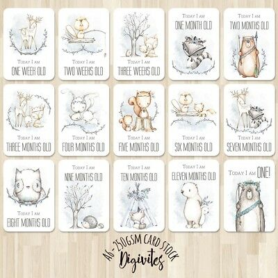 Baby Boy Milestone Cards, Baby Photo props, Woodland Animals, 28 card set