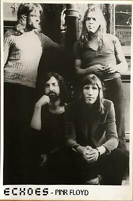 Pink Floyd Echoes Black & White Poster 24 x 36